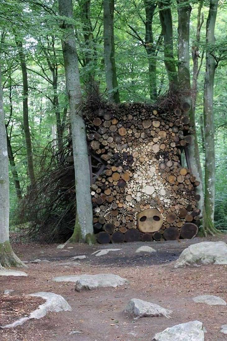 13 Fotos de como uma simples árvore pode ser transformado em arte