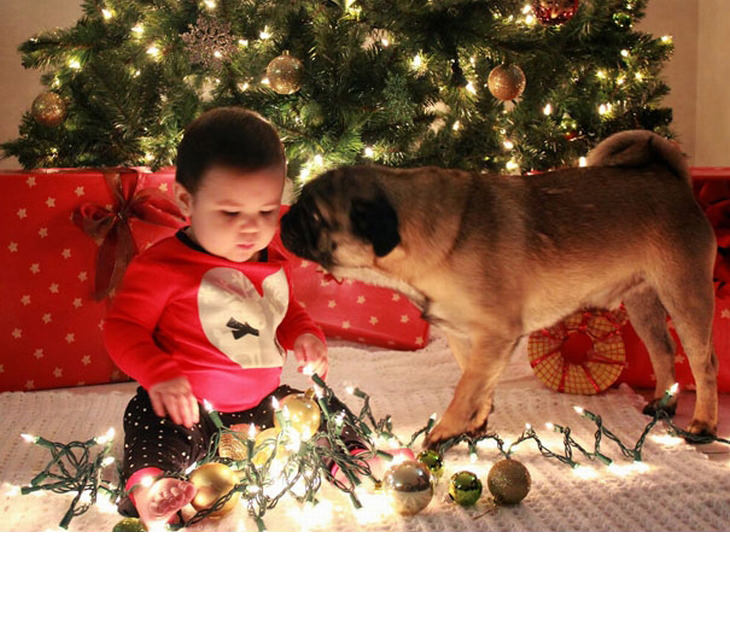 fotos de natal de bebês tudoporemail