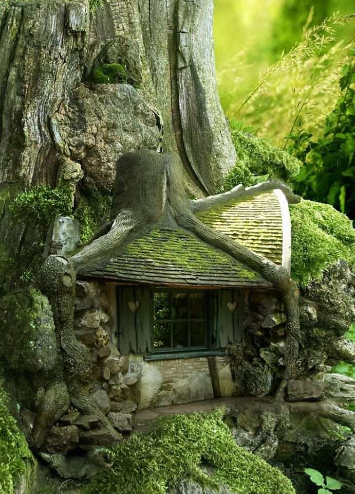 Incríveis casas de árvore