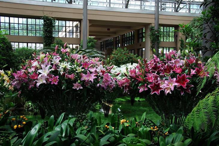 jardim botânico longwood