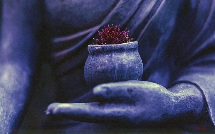 10 Conselhos Para Obter a Paz Interior