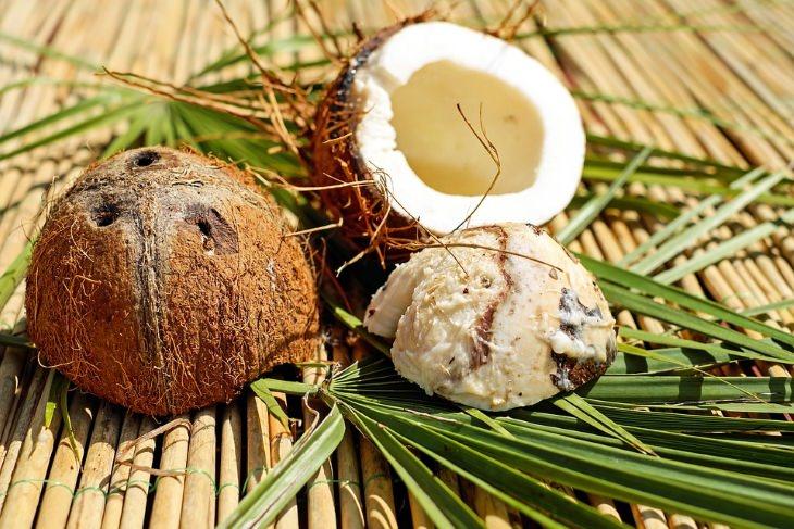 10 Excelentes Usos do Óleo de Coco
