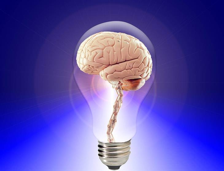 10 Hábitos Simples Para Proteger a Memória