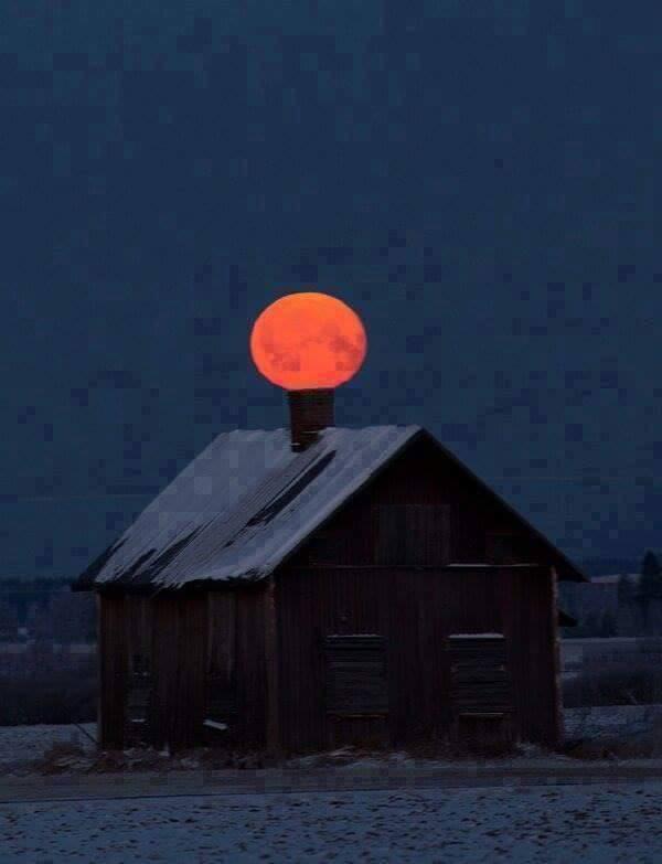 O Fascínio da Lua Cheia