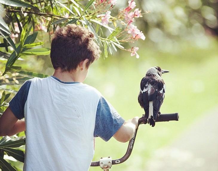 imagens positivas sobre a vida e a humanidade