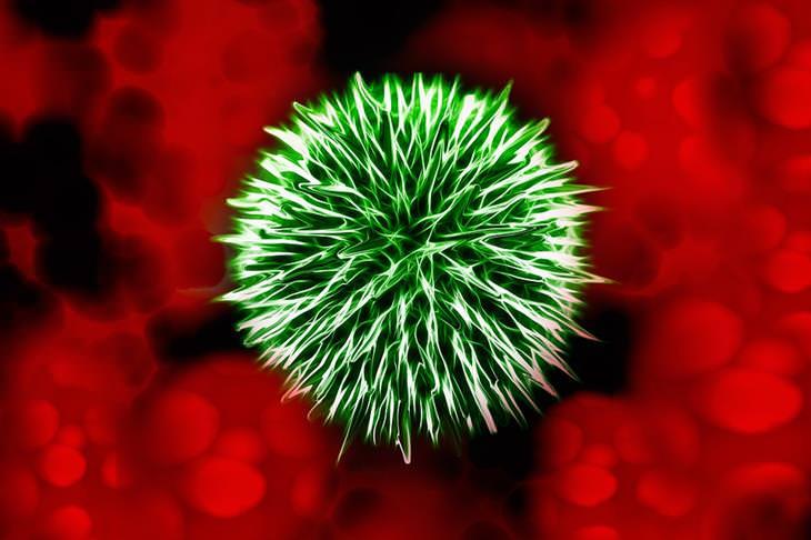 sepse: sintomas e tratamento