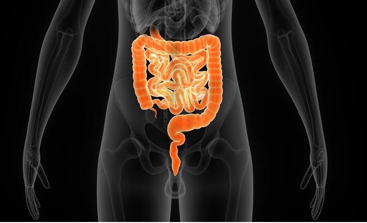 doenças gastrointestinais e seus sintomas