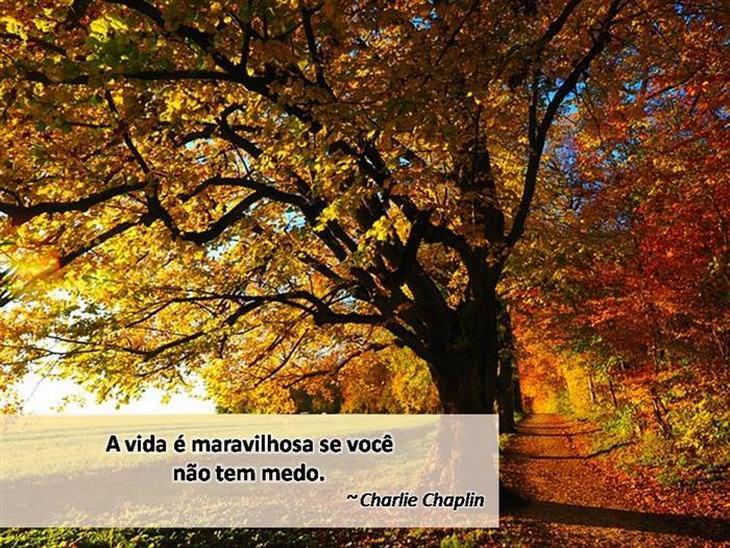 lindas frases de outono