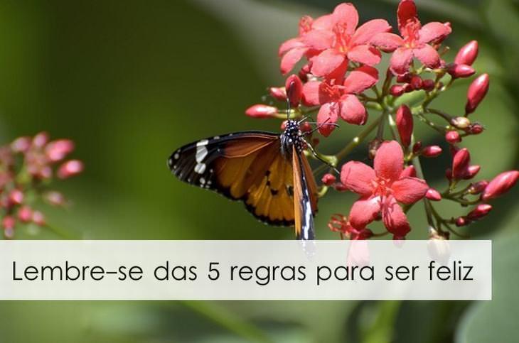 As 5 Regras Para Ser Mais Feliz
