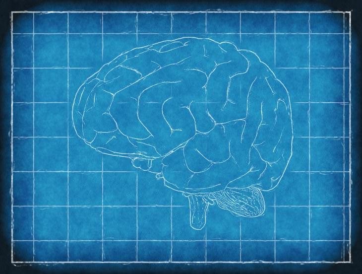 mal de Alzheimer cura