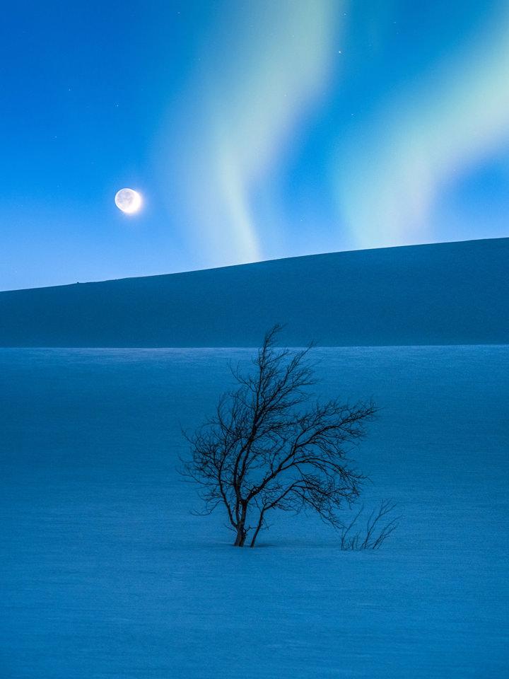 imagens do concurso do ano internacional da astronomia