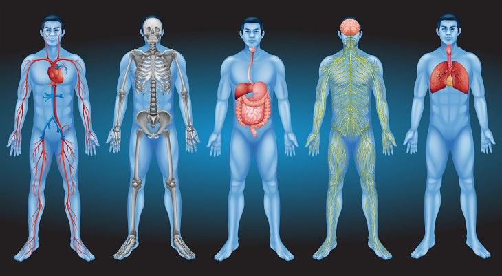 14 dicas para manter o pH alcalino do organismo
