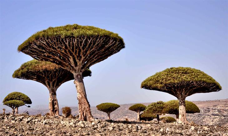 12 fascinantes paisagens estranhas