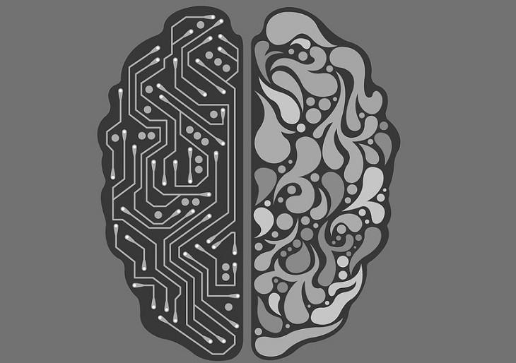 reclamar faz mal ao cérebro