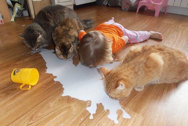 animais e crianças