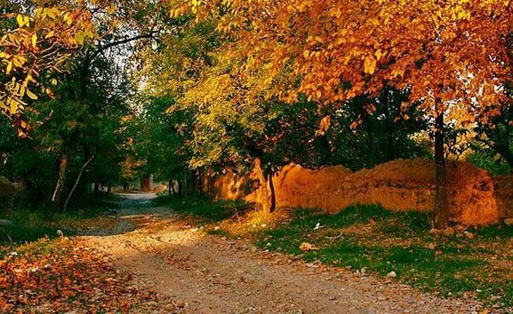 fotos de outono
