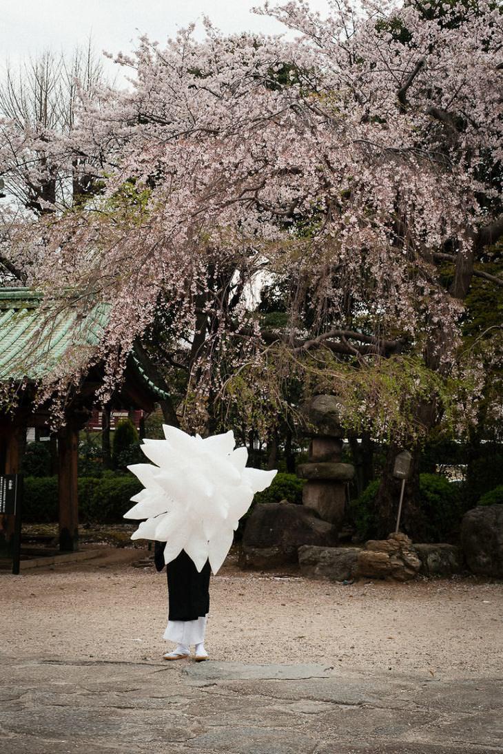 fotos do Japão