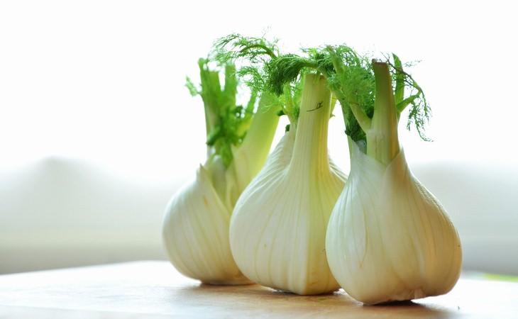 12 Benefícios da erva-doce para a sua saúde