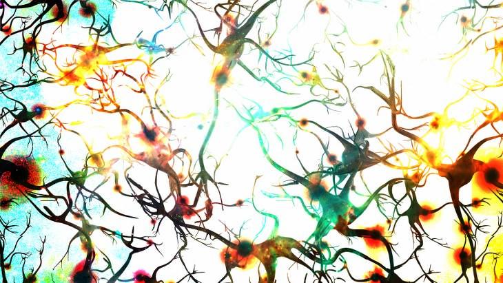 neurocientistas dizem que células cerebrais continuam crescendo até mesmo na velhice