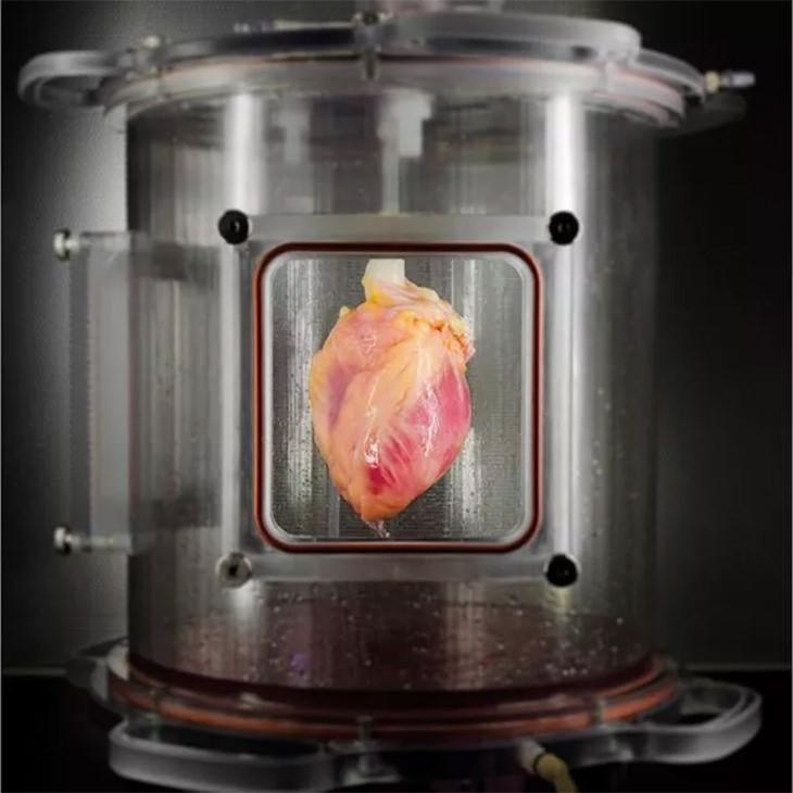 coração sintético