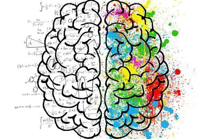 Ilustração de ambos os lados do cérebro, criativa e analítica