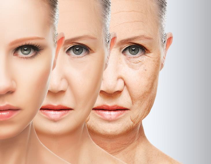 retardar envelhecimento