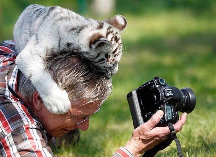 Fotógrafos com ajudantes