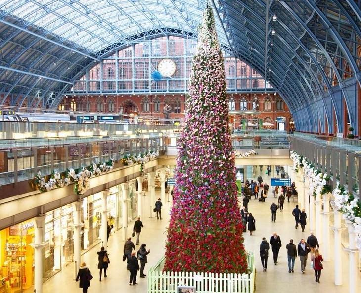 Belíssimas árvores de Natal Camden, Londres