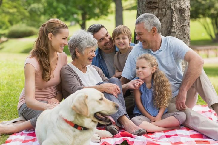 15 Perguntas para o médico família