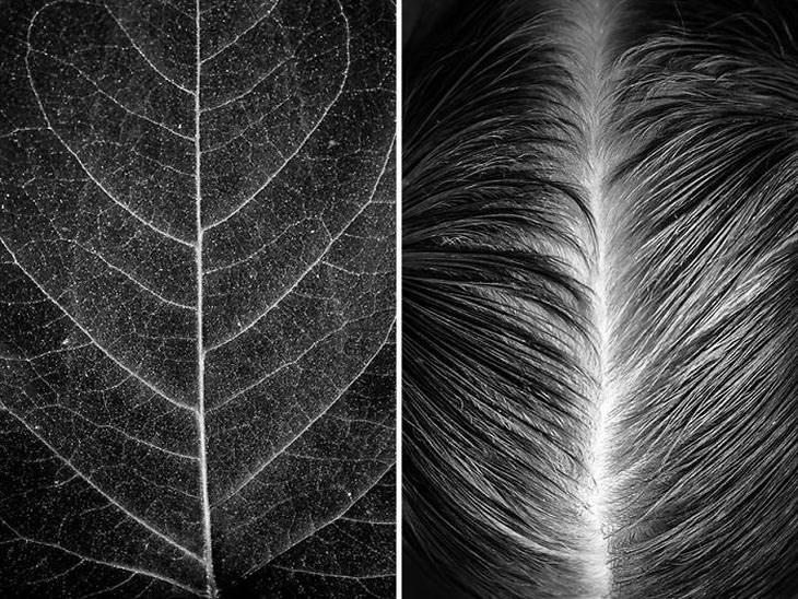corpo humano e natureza
