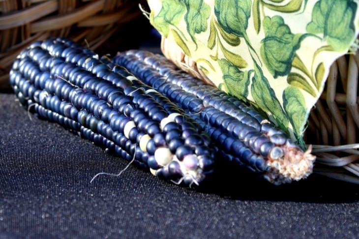 cor dos legumes