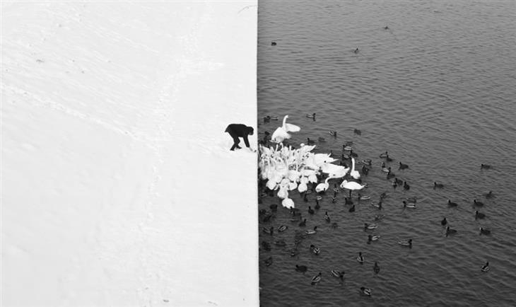 Fotografias impressionantes