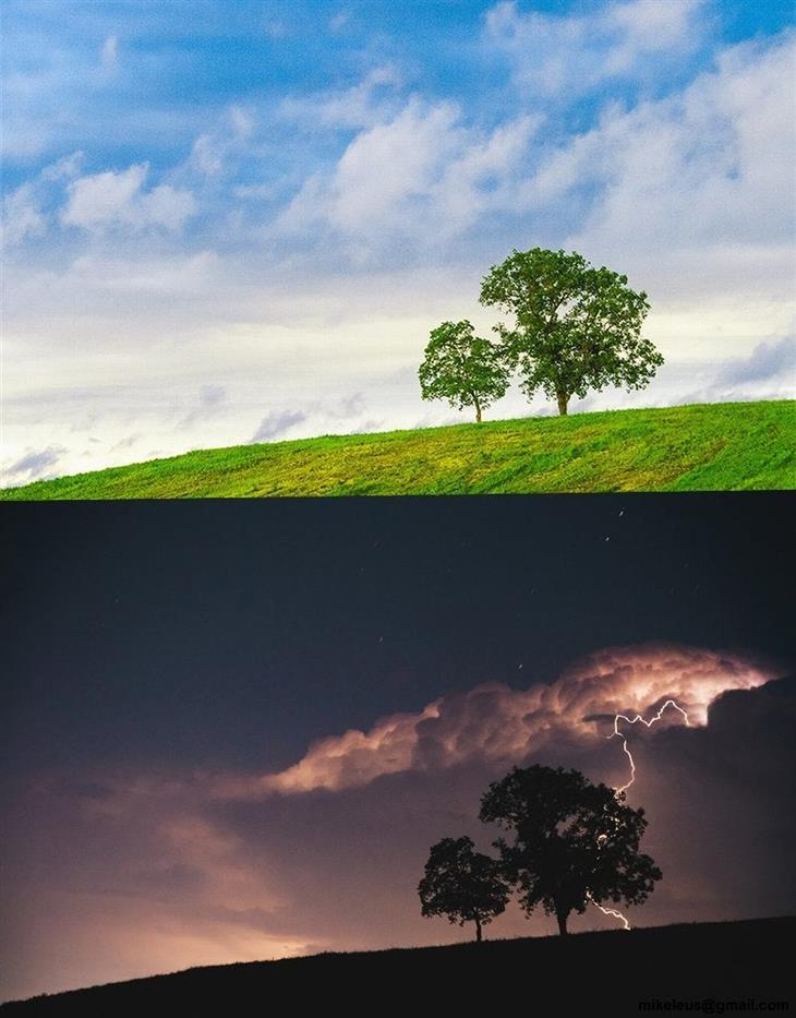 linda Terra