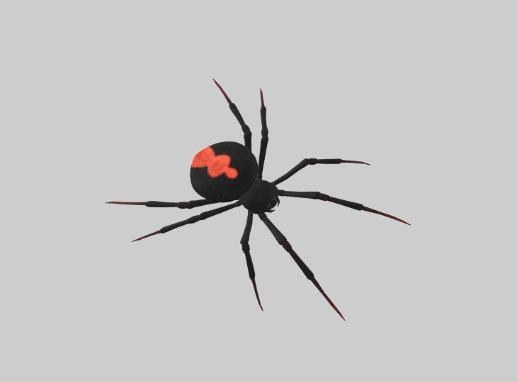 artrópodes e pesquisa médica aranha