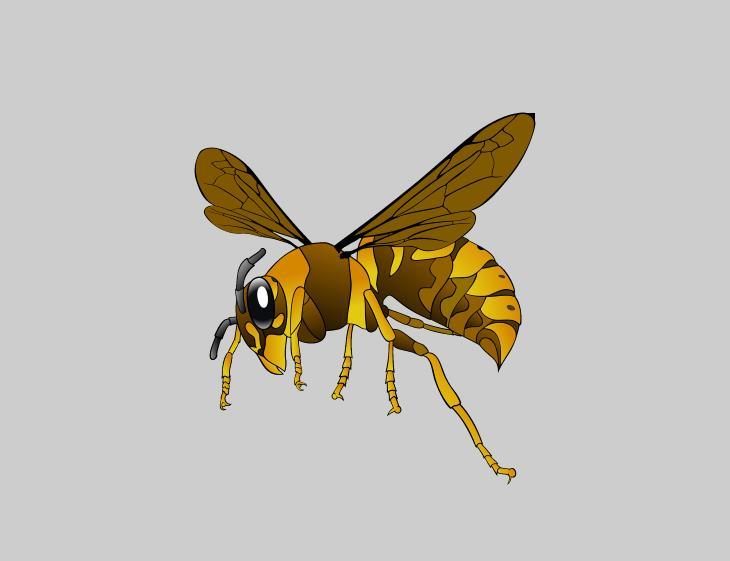 artrópodes e pesquisa médica vespa