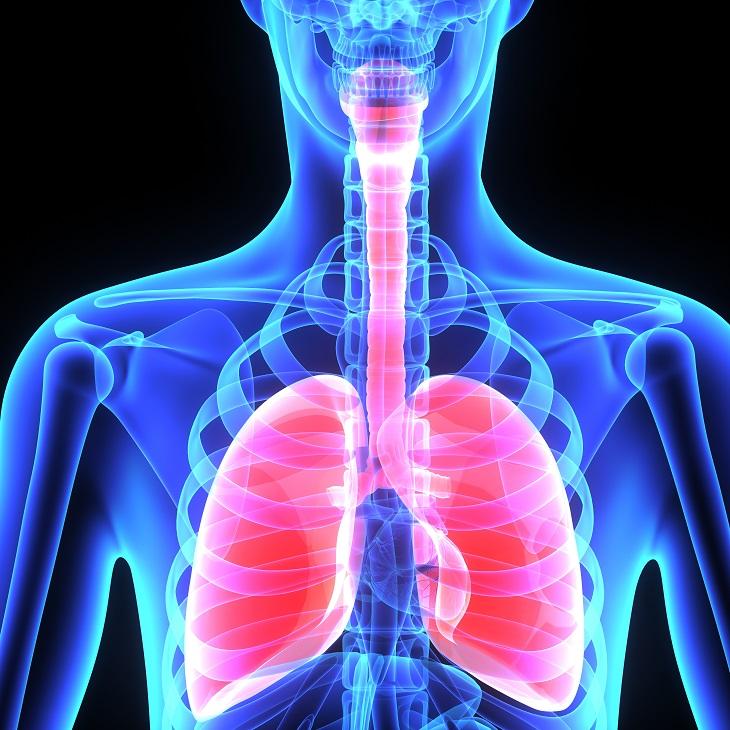 tratando caseiro asma