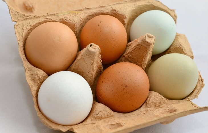 mitos sobre o ovo