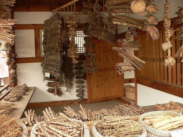 museus visitados