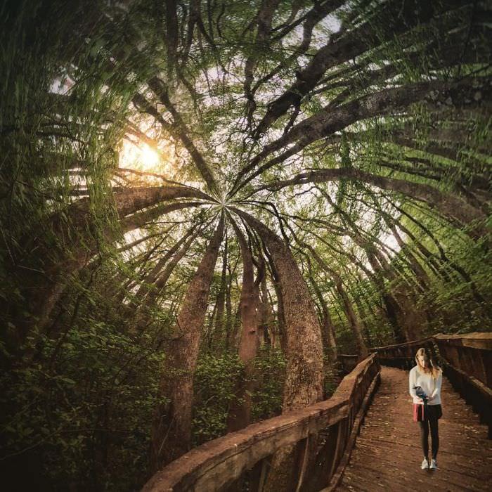 Mississipi em imagens de iPhone moça no bosque