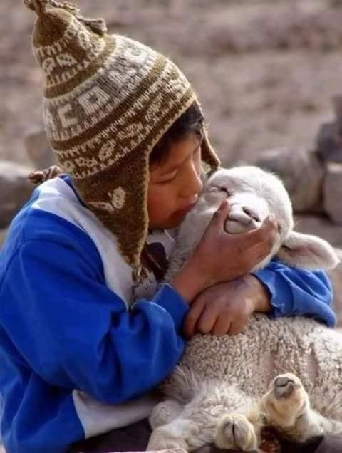 Crianças de Várias Culturas-criança andina com lhama