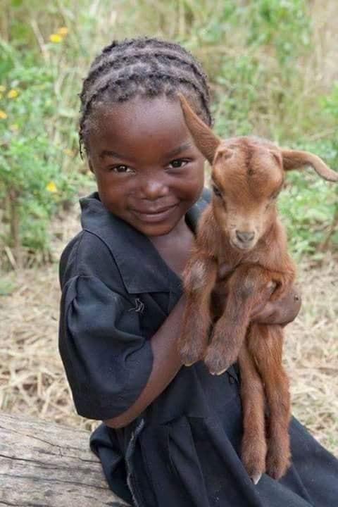 Crianças de Várias Culturas-menina africana com baby bambi