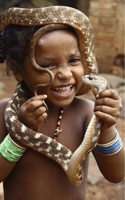 Crianças de Várias Culturas-menino indiano com serpente