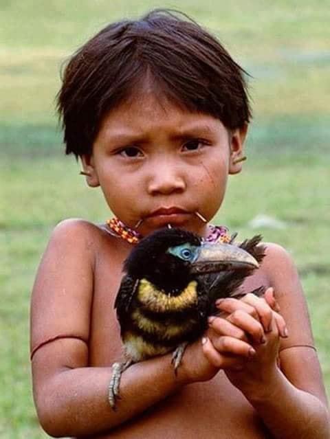 Crianças de Várias Culturas-curumim com tucano