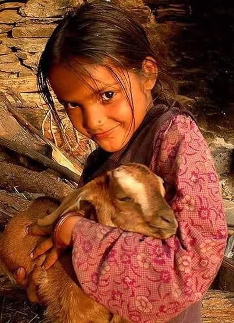 Crianças de Várias Culturas-menina com carneirinho