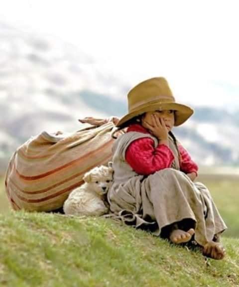 Crianças de Várias Culturas-criança andina com cãozinho