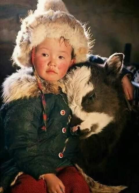 Crianças de Várias Culturas-criança da Mongólia com bezerro