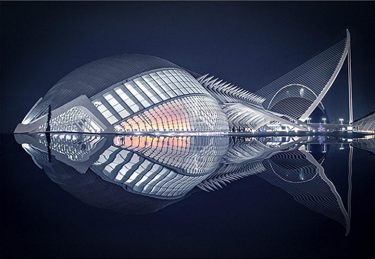 Beleza dos edifícios - peixe