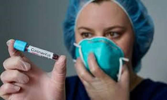 O essencial sobre coronavírus