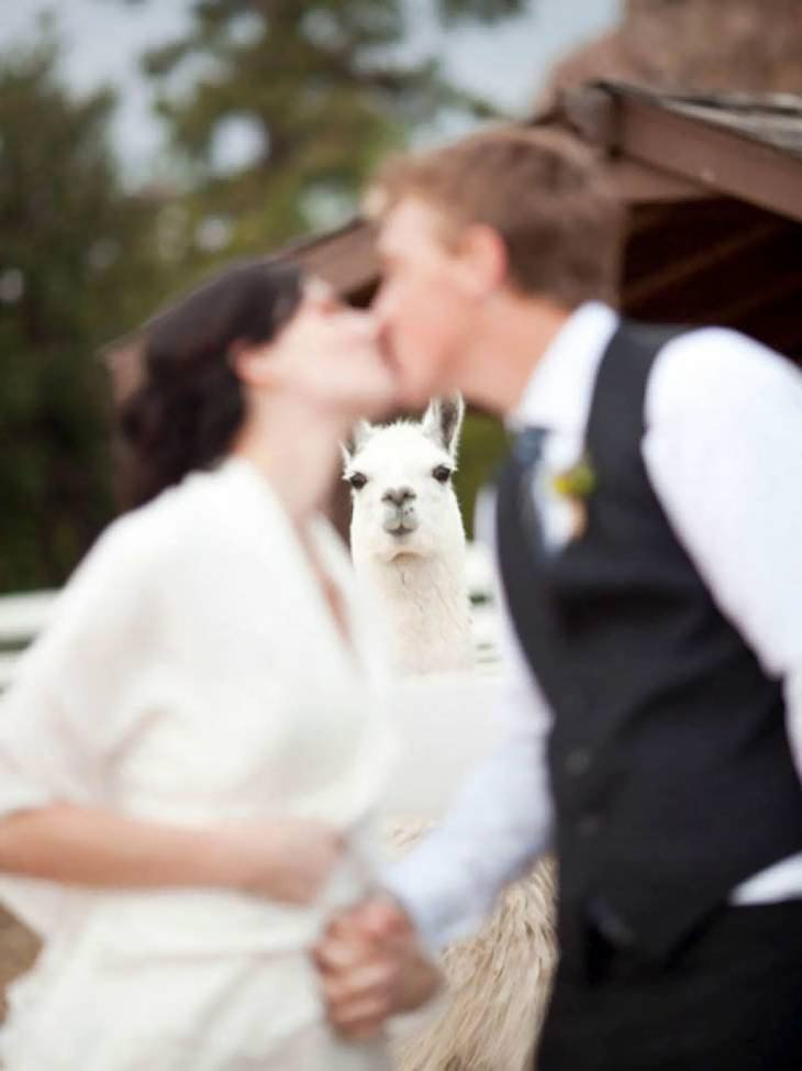 """Divertidas """"fotobombas"""" de casamentos"""