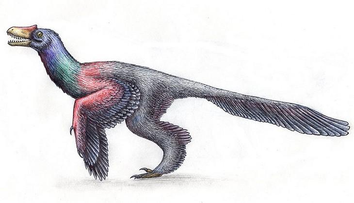 Os dinossauros não pareciam grandes lagartos